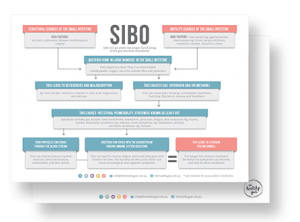SIBO Info-graphic