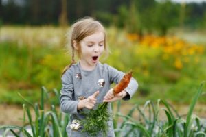 little girl with an organically grown carrot